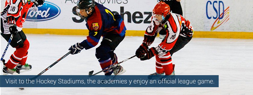 grass indoor hockey ice tours camps summer europe spain